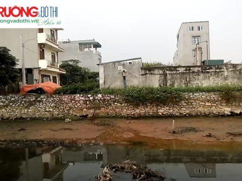 Ám ảnh dòng nước đen ngòm chảy cạnh KĐT Tân Tây Đô