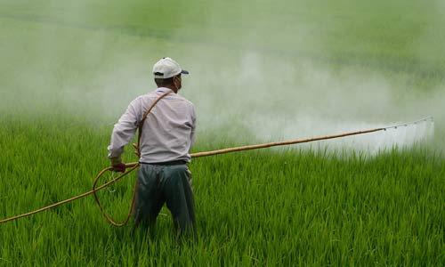 ô nhiễm môi trường nước nông nghiệp