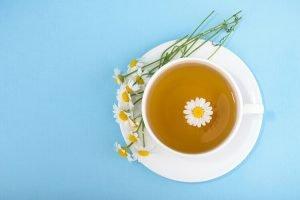 Tác dụng của trà hoa cúc với sức khỏe