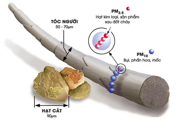 Kích thước PM 2.5 và PM 10