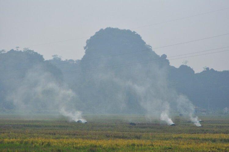 Đốt rơm rạ gây ô nhiễm không khí