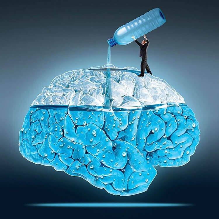 Vai trò của uống nước đối với khả năng nhận thức