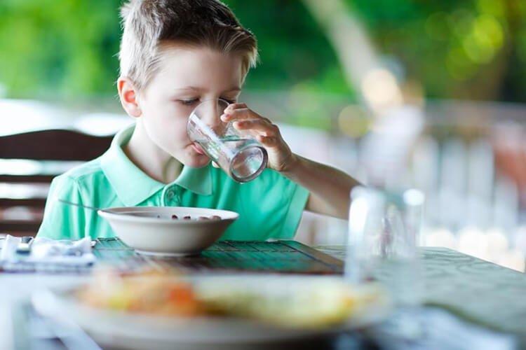Vai trò của nước đối với hệ tiêu hóa
