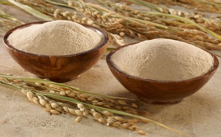 Đặc tính cám gạo như thế nào?