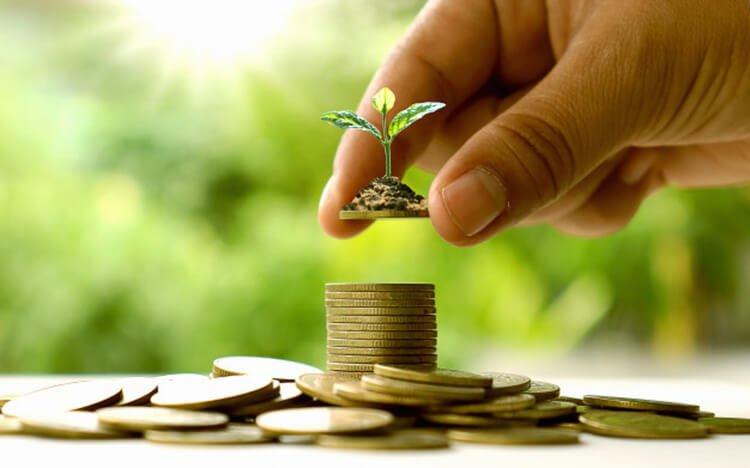 Cây xanh giúp tiết kiệm chi phí