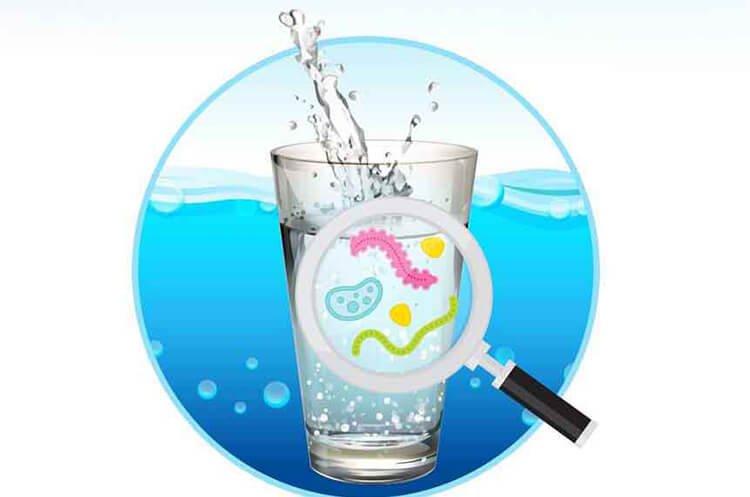 Chất gây ô nhiễm sinh học trong nước máy