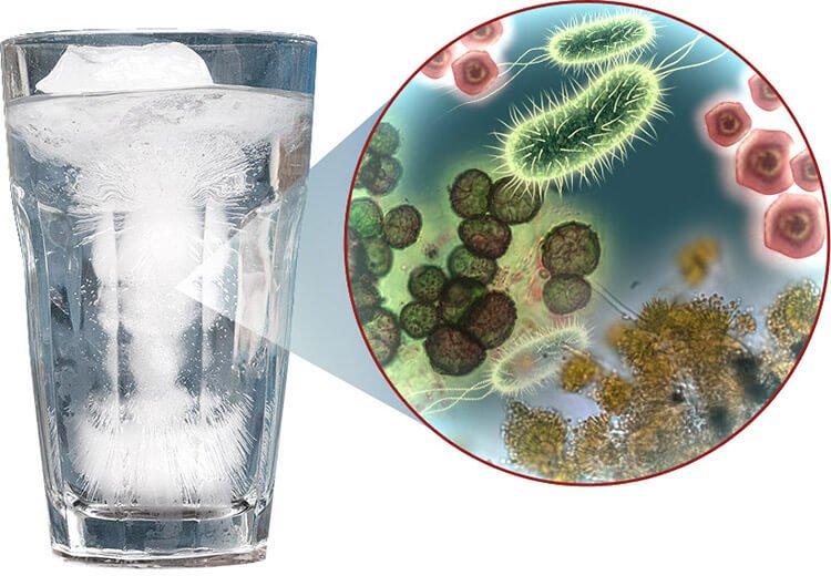 Nước bẩn do chất gây ô nhiễm sinh học